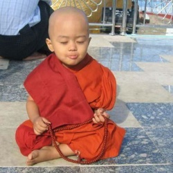 Little monk.jpg