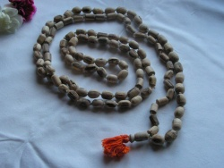 Japa mala (prayer beads) of Tulasi wood with 108 beads - 20040101-02.jpg