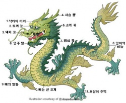 12jan dragon.jpg