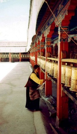 Prayer wheels at Nechung Chok.JPG