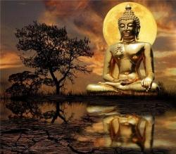 Gb.buddha.moon.jpg