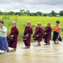 Little monks walking.jpg
