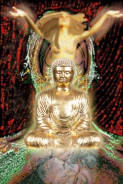 Grounds and Paths of Secret Mantra - Highest Yoga Tantra