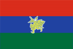 Flag of Kayah State.png
