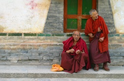 Monks at Kumbum Monastery.jpg